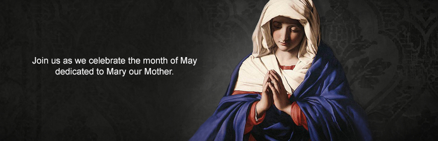 May is decidated to Mary our Mother