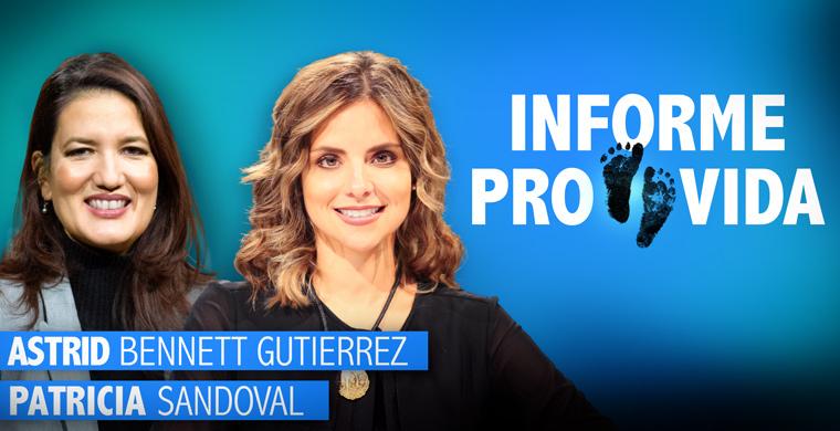 Informe Provida