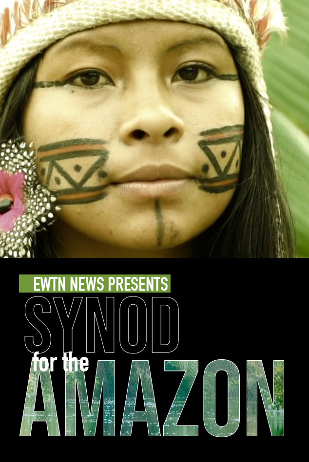Synod for the Amazon